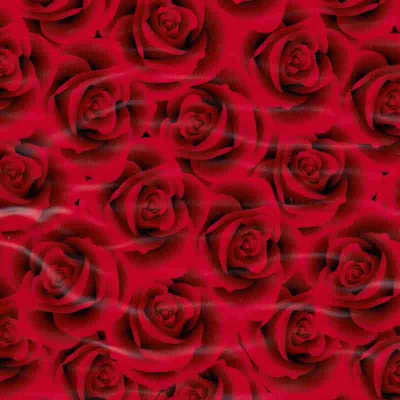 Small Red Roses Hydro Dipping Pattern