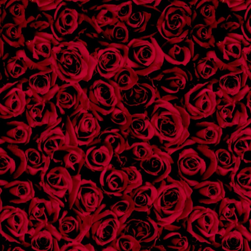 Red Roses Hydro Dipping Pattern