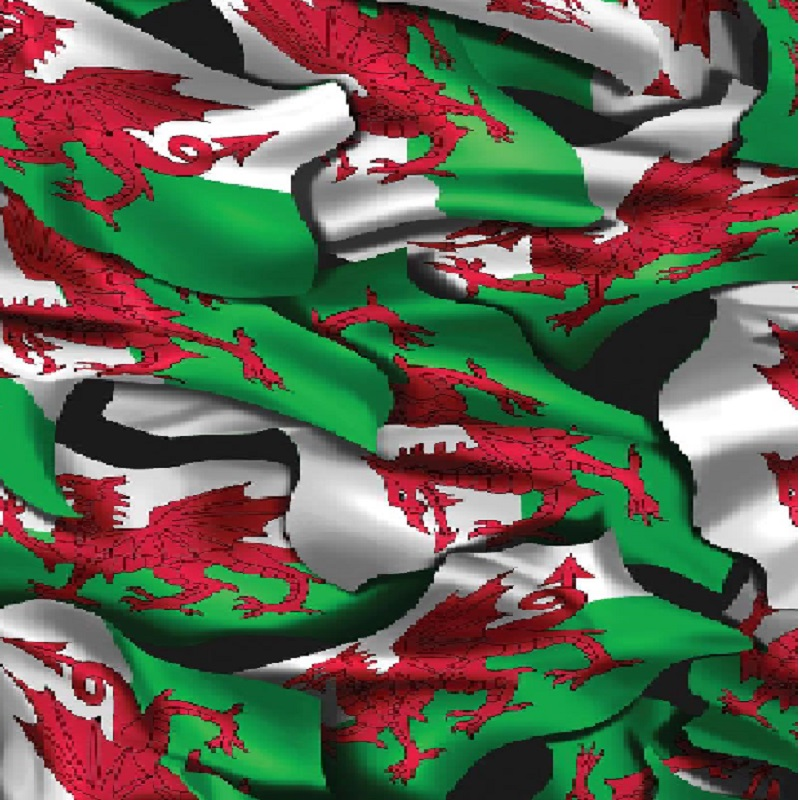 Welsh Flag Hydro Dipping Pattern